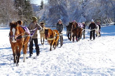 La Féclaz – A cheval dans la neige avec le centre équestre Volte-Face