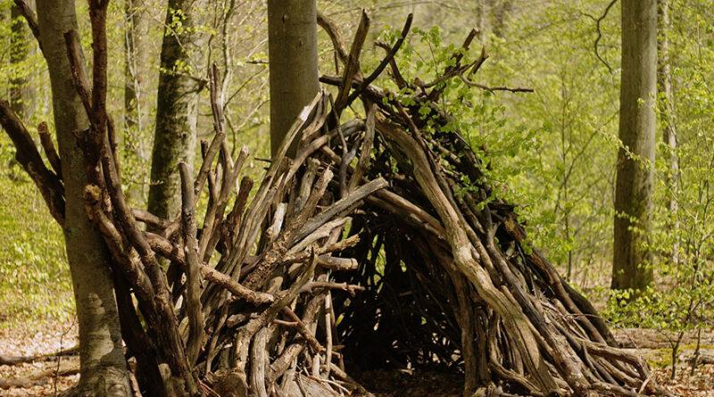 Nature – Construire une cabane dans les bois